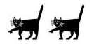 Image of two cats representing Dos Gatos Press