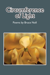 Circumference of Light by Bruce Noll
