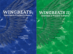 Wingbeats I and II covers